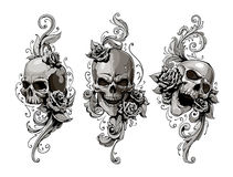 Free Skulls With Floral Patterns Royalty Free Stock Image - 35287876
