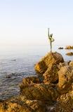 Skulptera ballerina (dansare av Budva) på stenar, Budva, Monteneg arkivfoton