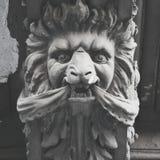 Skulptera lejonet, det XIXth århundradet, St Petersburg, Ryssland Royaltyfria Foton