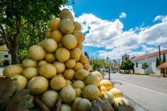 Skulptur av en jätte- grupp av druvor med ett stadigt flöde av vatten sipprar ner i stadskärnan av Azeitao fotografering för bildbyråer