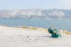 Skulptur-Delphine auf dem Damm von Novorossiysk Lizenzfreie Stockbilder