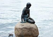 Skulptur der Meerjungfrau in Kopenhagen Stockfotografie