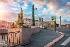 Skulptur der Sphinxes auf der ägyptischen Brücke Lizenzfreie Stockfotos