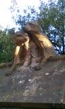 Skulptur von Tieren lizenzfreie stockfotografie