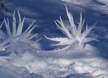 Skulpturen im Schnee Lizenzfreies Stockbild