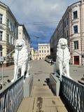 skulpturer av lejon som rymmer staketet av bron royaltyfri fotografi