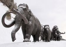 Skulpturer av mammoths i Archeopark, Khanty - Mansiysk, Ryssland lokaliserade på foten av den is- kullen, Archeopark visar naturt Arkivbild