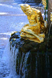 Skulpturtrollkarl i Peterhof, St Petersburg, Ryssland Arkivbilder