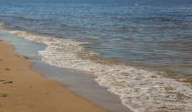 Skum för tidvattens- tråkmåns och havs Royaltyfria Foton
