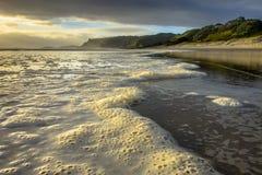 Skum på bränningen av den Pakiri kusten, Nya Zeeland Royaltyfri Fotografi