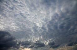 skumbriowego niebo Obrazy Royalty Free