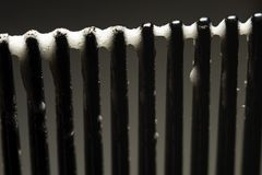 Skumma på spetsarna av en hårkammakro Royaltyfri Fotografi