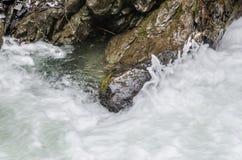 skumma vatten Arkivbilder