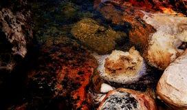 skumma vatten Royaltyfria Foton