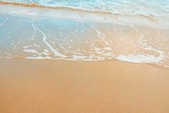 Skummande klar havsvåg som rullar till guld- vatten för sandkustturkos Härligt stillsamt idylliskt landskap Havstrandsemestern ko Arkivbilder