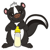 Skunk with a drink Stock Photos