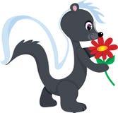 Skunk Flower royalty free illustration