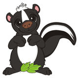 Skunk and green object Royalty Free Stock Images