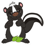 Skunk with leaves Royalty Free Stock Images