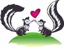 SKUNK LOVE Stock Photography