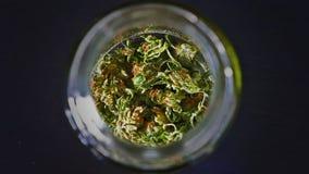 Skunkmarijuanauttorkning i en avvänjningkrus Arkivfoton