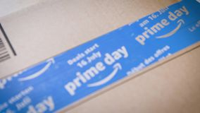 Skupia się na amazonka Pierwszorzędnego dnia kartonowym drobnicowym kartonie zbiory wideo