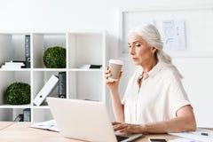 Skupiająca się dojrzała biznesowa kobieta pracuje na laptopie Zdjęcia Royalty Free