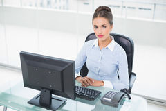 Skupiający się brunetka bizneswomanu obsiadanie przy jej biurkiem Zdjęcia Stock