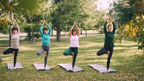 Skupiający się dziewczyny yogini stoi w Vrksasana pozy Drzewnej pozyci na joga matach w parku w jesieni utrzymuje równowagę i zdjęcie wideo