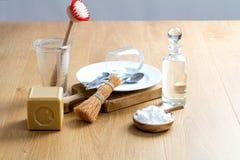 Skurande och rengörande disk med hemlagat tvagningtvättmedel, stilleben Royaltyfri Foto