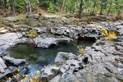 Skurk- flod, centrala Oregon Royaltyfria Foton