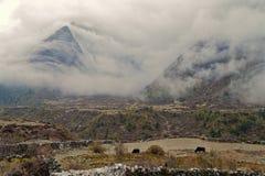 Skurkrollen fördunklar över bergen Arkivfoton