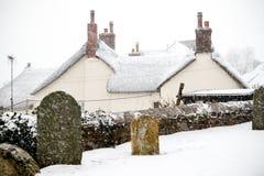 Skutek bestia Od Wschodniej zimy Śnieżnej burzy w Drews Zdjęcia Royalty Free