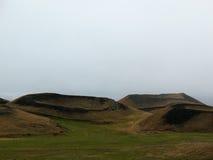 Skutustadir, bello paesaggio islandese Immagini Stock