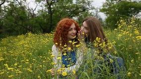 Skvallra för flickvänner långsam rörelse lager videofilmer
