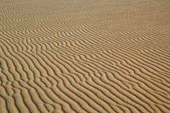 Skvalpar i Sand Royaltyfri Fotografi