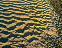 Skvalpar i sanden Arkivbild