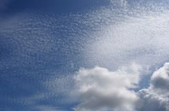 SKY. High stratocumulus in the summer day, background Stock Image