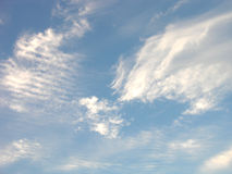 Sky. How many kinds of clouds can there be in one patch of sky anyway royalty free stock photography