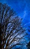 Sky. A representation of depth of sky Stock Photo