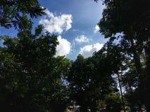 sky Royaltyfri Fotografi