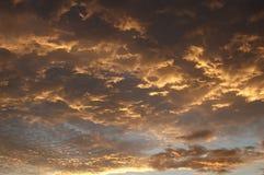 Sky. Sunshine sky stock images
