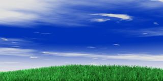 Free Sky And Grass Royalty Free Stock Photos - 4655318