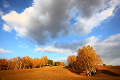 Sky on autumn prairie Stock Photos