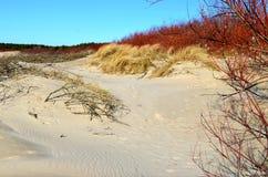 Sky and baltic sea nature stock photos