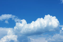 Sky. Beautiful sky, birds  sunlight cluodsn Stock Photo