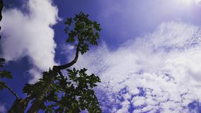 Sky is a poem. Sky is a beautiful poem. The clouds hovering over a deep blue sky clearly boast of an awesome beauty royalty free stock photography