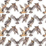 Sky bird owl pattern in a wildlife by watercolor style. Wild freedom, bird with a flying wings. Aquarelle bird for background, texture, pattern, frame, border Stock Images