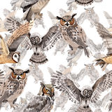 Sky bird owl pattern in a wildlife by watercolor style. Wild freedom, bird with a flying wings. Aquarelle bird for background, texture, pattern, frame, border Royalty Free Stock Photo