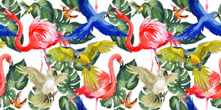Sky bird parrot pattern in a wildlife by watercolor style. Stock Image